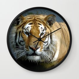 Sibirien Tiger Wall Clock