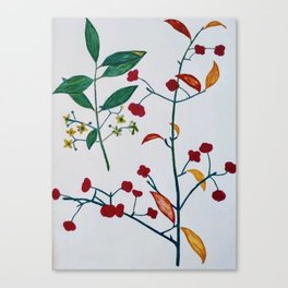 Burning bush summer Canvas Print