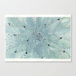 Ágave Canvas Print
