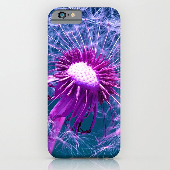 purple dandelion I iPhone & iPod Case