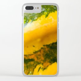 Twisted Squash Clear iPhone Case