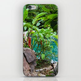 Dreamy Garden Views iPhone Skin