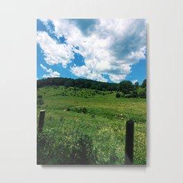 Virginia Fields Metal Print