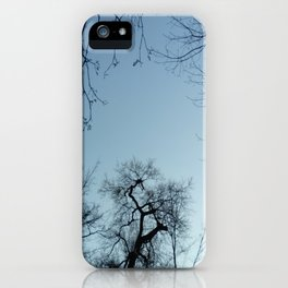 Nature, landscape and twilight 3 iPhone Case
