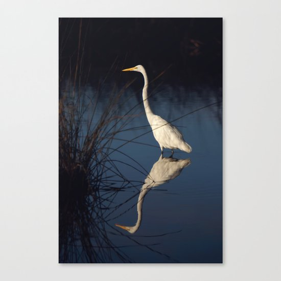 Morning Egret Reflection Canvas Print