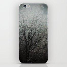 Winter Raven iPhone Skin