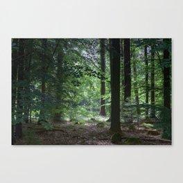 Summer Glade Canvas Print