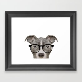Pit bull with glasses Dog illustration original painting print Framed Art Print