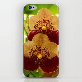 Joy And Happyness iPhone Skin