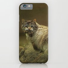 A Game of Cat and Mouse iPhone 6s Slim Case