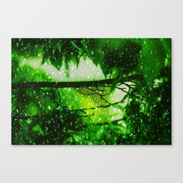 Raindrops falling in love Canvas Print