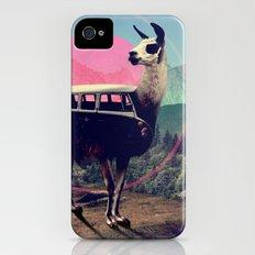 Llama iPhone (4, 4s) Slim Case