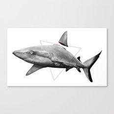 Shark Fin Canvas Print