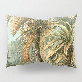 Vintage Tropical Palm Pillow Sham