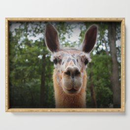 Speckled Face Llama Serving Tray