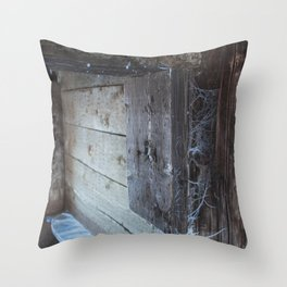 Frosted Cobwebs Throw Pillow