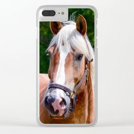 Equine Beauty Clear iPhone Case