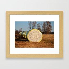 Round Bales Of Cotton Framed Art Print