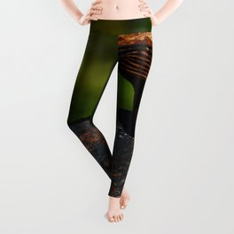 Rust - I Leggings