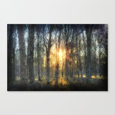 Early Morning Forest Art Canvas Print