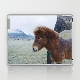Brown Horse in Iceland Laptop & iPad Skin