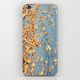 The cracks are starting to show iPhone Skin
