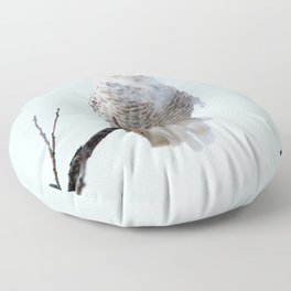 Lofty Vision (Snowy Owl) Floor Pillow