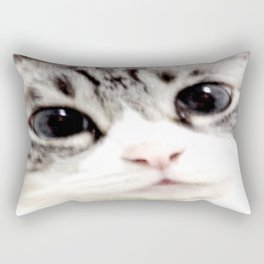 My name is chill of pink nose and blue eyes. I Love Cat. (Normal) Rectangular Pillow