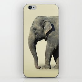 Ribbon Elephant iPhone Skin