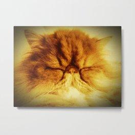 Bunker the Cat Metal Print