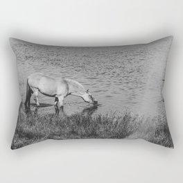 Horse Drinking Denmark Nymindegab bw Rectangular Pillow