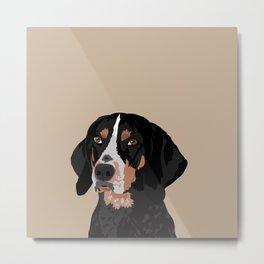 Maggie bluetick coonhound Metal Print