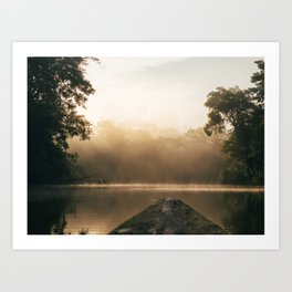 Amazonas view Art Print