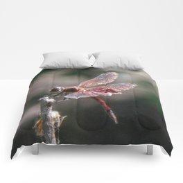 Small Dragon 6, Fantasy Comforters