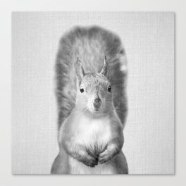 Squirrel - Black & White Canvas Print