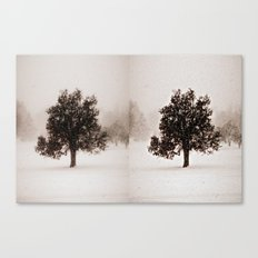The Loner II Canvas Print