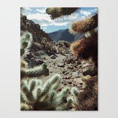 Cholla Frame Canvas Print