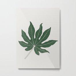 Aralia Leaf Illustration Metal Print