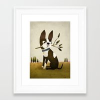boston terrier Framed Art Prints featuring Boston Terrier by Patrick Latimer
