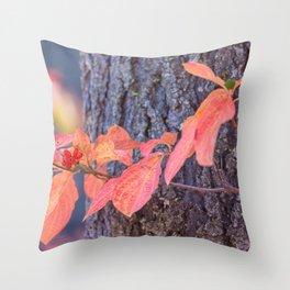 Dogwood Fruit Throw Pillow