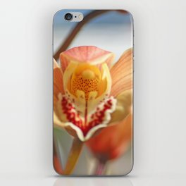 orchid flower ready to fly iPhone Skin