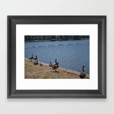 Geesee Framed Art Print