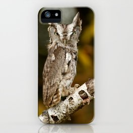 Screech to a halt iPhone Case