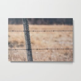 gone country Metal Print