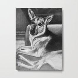 All Ears German Shepherd Drawing Metal Print