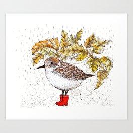 Birds Edition Art Print