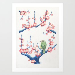 The Japanese Bush Warbler in the Plum Tree Art Print