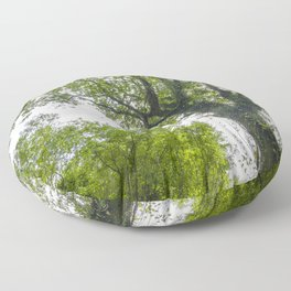 Wild nature parks IV - Nature Fine Art photography Floor Pillow