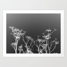 Night Sky in Reverse Art Print