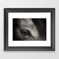 Horse Eye Framed Art Print